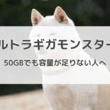月間50GBのウルトラギガモンスター+でも容量が足りない!無制限wifiの導入もありです!